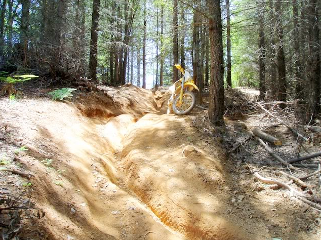 rutted_trail